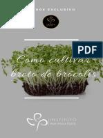 Cultivar Brotos de Brócolis
