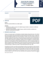 3. Guía potencial hidrico.docx