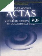 Formulacion_Actas_Oficios_Aud_Fiscal