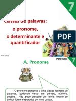 pron_determ_quantifi.pdf