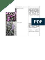 TALLER 3 . SILVICULTURA  (1).docx