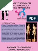 1_ANATOMIA_Y_FISIOLOGIA.pptx.pptx