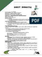 Proiect.limba.romana.cl.a_IV-a.doc.docx