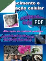 6_Alterações do material genético_mutações