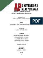 ARGUMENTACIÓN CAS.docx