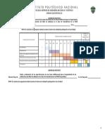 CRONOGRAMA .pdf