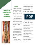 anatomia palpatoria para web