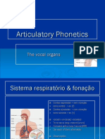Phonetics - The vocal organs