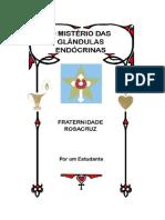 O_Misterio_das_Glandulas_Endocrinas_2020