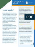 ICVA_Nexus_briefing_paper (Low Res)