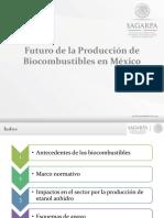 9 Presentacion Evento Colpos Chapingo 291113.pdf