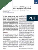 Hazelbaker et al. - 2013 - Kinetic Competition between RNA Polymerase II and Sen1-Dependent Transcription Termination.pdf
