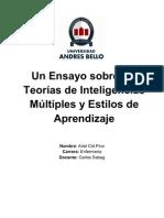 Essay Inteligencias Multiples