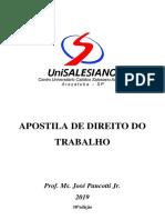 material direito do trabalho.pdf