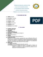 TAXONOMIA DEL PINO.docx