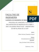 PDF- CONCENTRACION DE MINERALES