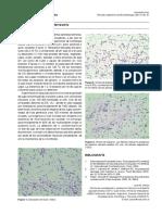 ALYCICLOBACILLUS.pdf