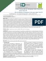 Texto del artículo-2020.pdf