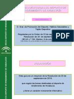 BECAS DEPORTE DE RENDIMIENTO DE ANDALUCÍA_5.2019ppt