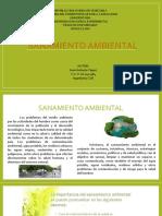 Sanamiento Ambiental