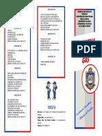 GAS TRIPTICO PDF