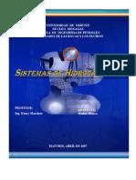 2.-Sistemas de Hidrocarburos.doc