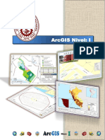 Manual _ ArcGIS Nivel I