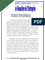 analyse financière et diagnostic