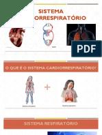 BIO-12-definitivo-pdf