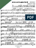 Al Señor D_ Los Milagros Nº 16.pdf