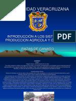 DIAPOSITIVAS_RAZAS_DE_GANADO