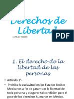 Derechos de Libertad