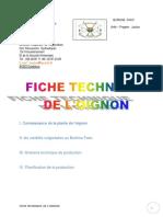 Fiche-technique-sur-loignon-R.docx