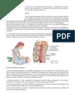 iuqar 2.pdf