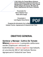 PROYECTO - TOMATE