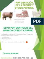 Toxemia de la preñez y edad por dentición (1).pptx