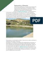 Lagunas de Maduración o Pulimento.docx