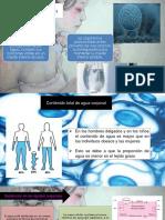 Líquidos, electrólitos y equilibrio.pptx