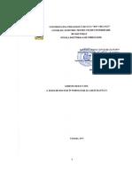 subdiv_dep_dsdp_ghid_perfect_tez_rezumat_doctorat