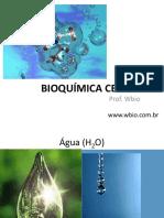 Aula-BioquÃ_mica-celular-Wbio.pdf