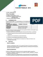 PLAN DE ACTIDADES PARA LA PRMOCION 2018--converted