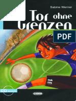 werner_s_tor_ohne_grenzen_a2