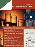 11-LIPID-METABOLISM