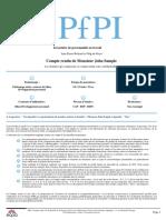 Exemple-rapport-PfPI