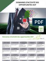Domaines d_activité des opportunités OCP.pdf