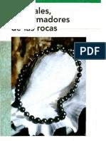 Minerales los formadores de las rocas.pdf