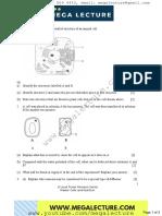 Biology-Worksheet