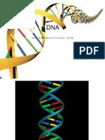 5.1 DNA