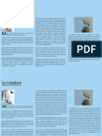 Sticker - La Voladora 01 - 70 x 50 cm x2