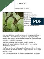 Plantas biología